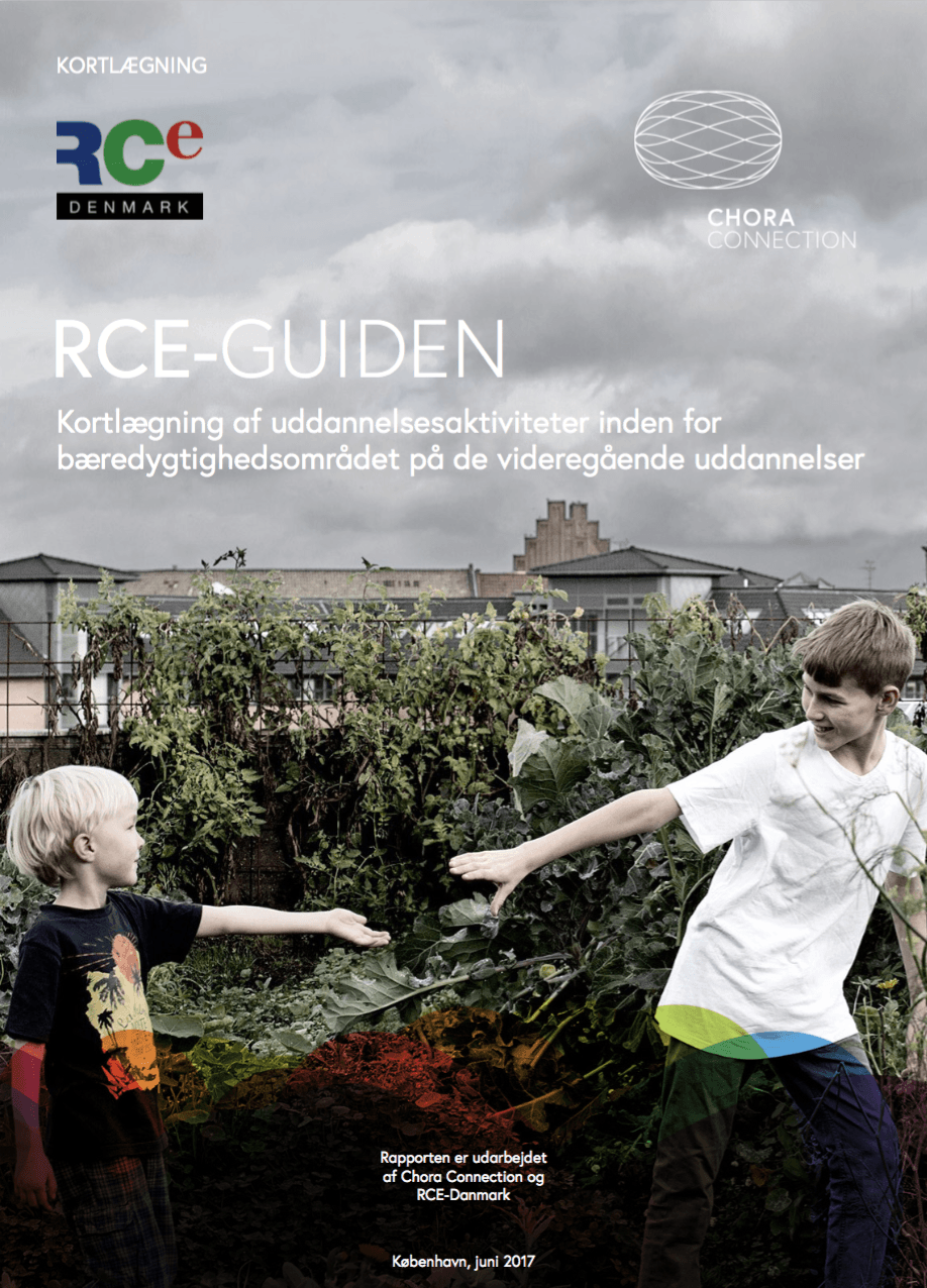 RCE-guiden