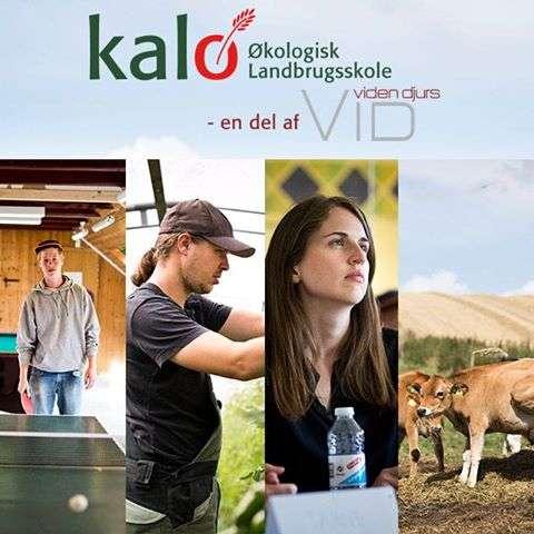 Den Økologiske Landbrugsskole på Kalø
