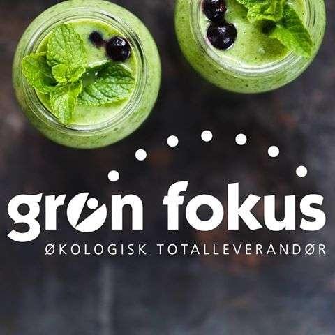 Grøn Fokus A/S