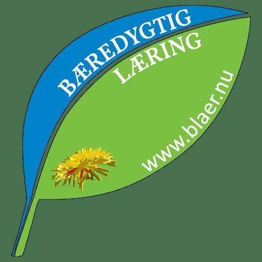Bæredygtig Læring