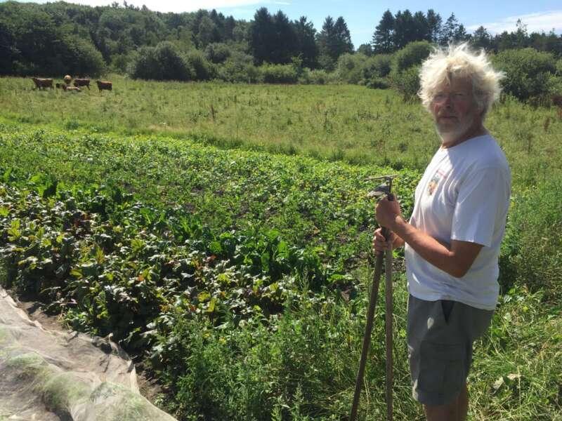 Grønne Staldtips – Præmiere! ALLAN BORNØ CLAUSEN – Adgang til jorden – for mennesker, dyr og sommerfugle