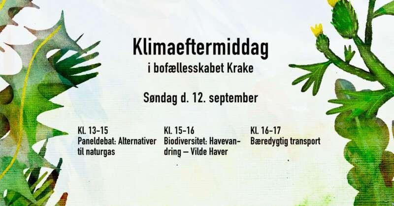 Klimaeftermiddag bofællesskabet Krake: alternativer til naturgas, vilde haver, bæredygtig transport